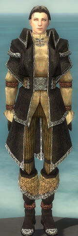 File:Elementalist Ancient Armor M dyed front.jpg
