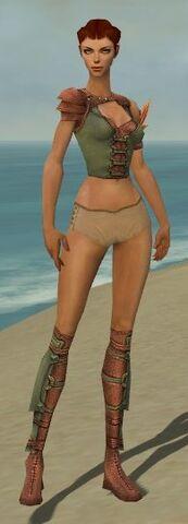 File:Ranger Ascalon Armor F gray chest feet front.jpg