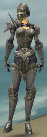 File:Warrior Platemail Armor F gray front.jpg