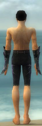 File:Elementalist Elite Stormforged Armor M gray arms legs back.jpg