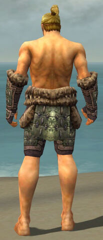 File:Warrior Charr Hide Armor M gray arms legs back.jpg
