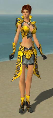 File:Elementalist Monument Armor F dyed front.jpg