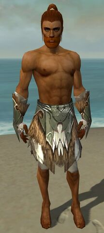 File:Paragon Norn Armor M gray arms legs front.jpg