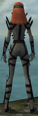 Assassin Obsidian Armor F gray back