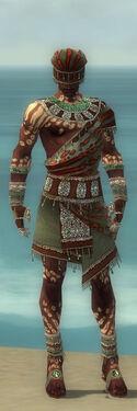 Ritualist Elite Exotic Armor M gray front
