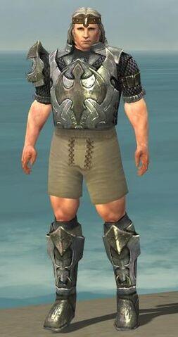 File:Warrior Elite Templar Armor M gray chest feet front.jpg