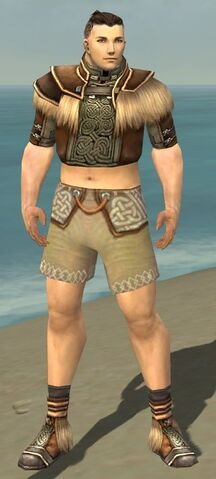 File:Monk Norn Armor M gray chest feet front.jpg