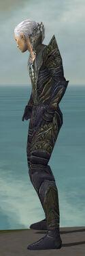 Necromancer Krytan Armor M gray side