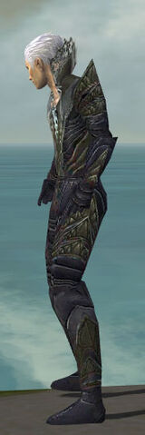 File:Necromancer Krytan Armor M gray side.jpg