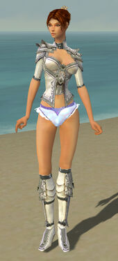Elementalist Tyrian Armor F gray chest feet front