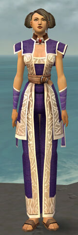 File:Monk Tyrian Armor F dyed front.jpg