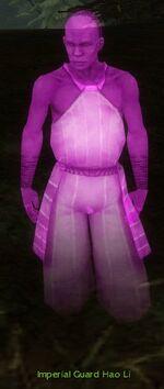 Imperial Guard Hao Li