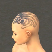 File:Monk Primeval Armor F gray head side.jpg