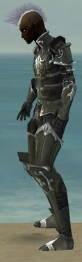 Necromancer Tyrian Armor M gray side