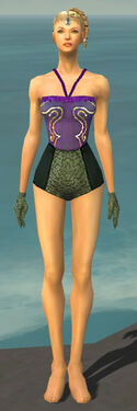 Mesmer Shing Jea Armor F gray arms legs front