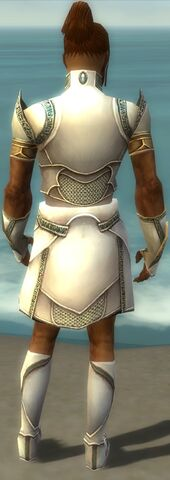 File:Paragon Asuran Armor M gray back.jpg