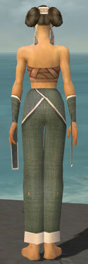 Monk Ascalon Armor F gray arms legs back