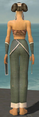 File:Monk Ascalon Armor F gray arms legs back.jpg