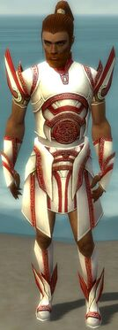 Paragon Asuran Armor M dyed front