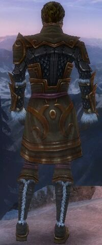File:Ranger Elite Canthan armor Male back-dyed.jpg