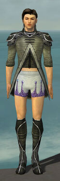 Elementalist Shing Jea Armor M gray chest feet front