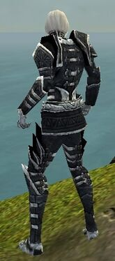 Necromancer Elite Cultist Armor M dyed back