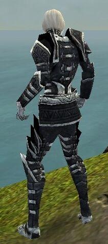 File:Necromancer Elite Cultist Armor M dyed back.jpg
