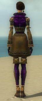 Mesmer Ancient Armor F dyed back