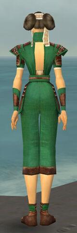 File:Monk Censor Armor F dyed back.jpg
