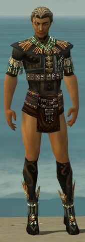 File:Ritualist Elite Luxon Armor M gray chest feet front.jpg