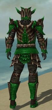 Warrior Elite Dragon Armor M dyed back