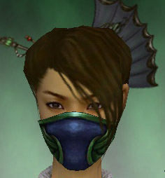File:Assassin Norn Armor F dyed head front.jpg