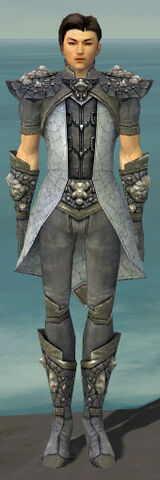 File:Elementalist Stoneforged Armor M gray front.jpg