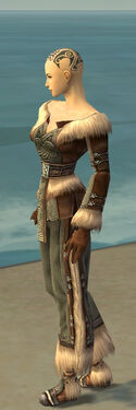 Monk Norn Armor F gray side
