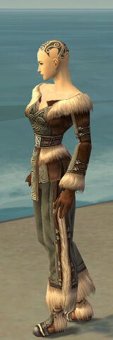 File:Monk Norn Armor F gray side.jpg