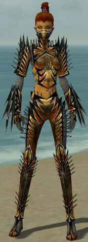 File:Assassin Elite Exotic Armor F gray front.jpg