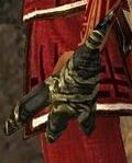 Grim Claw