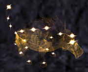 Miniature Celestial Pig