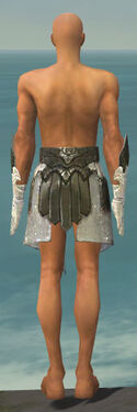 Paragon Elonian Armor M gray arms legs back