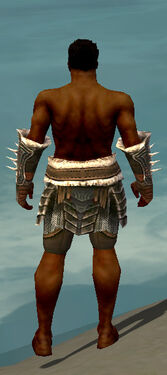 Warrior Norn Armor M gray arms legs back