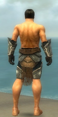 File:Warrior Sunspear Armor M gray arms legs back.jpg