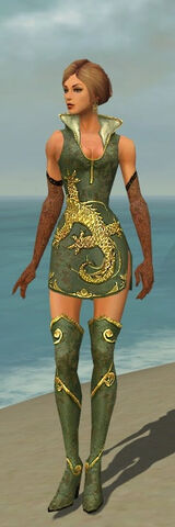 File:Mesmer Elite Canthan Armor F gray chest feet front.jpg