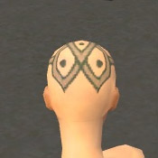 File:Monk Elite Luxon Armor F gray head back.jpg