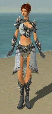Elementalist Stoneforged Armor F gray front