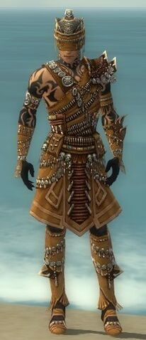 File:Ritualist Elite Imperial Armor M dyed front.jpg