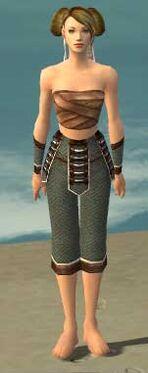 Monk Elite Judge Armor F gray arms legs front