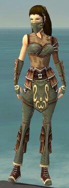 Ranger Shing Jea Armor F gray front