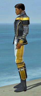 Elementalist Luxon Armor M dyed side