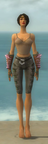 File:Ranger Drakescale Armor F gray arms legs front.jpg