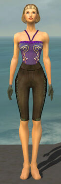 Mesmer Istani Armor F gray arms legs front